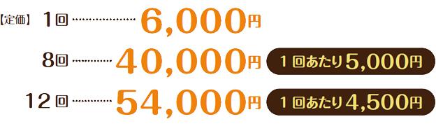 【定価】1回6,000円/8回40,000円(1回あたり5,000円)/12 回54,000円(1回あたり4,500円)